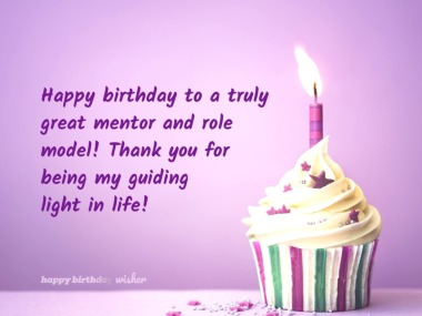 To my mentor and guiding light